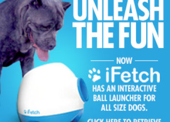 ifetch Banner Ads
