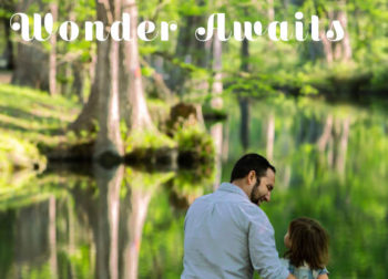Wimberley Wonder Facebook